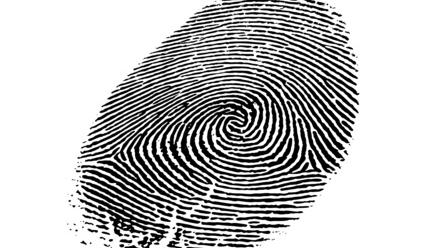 Read more about the article La diversification de l'authentification biométrique